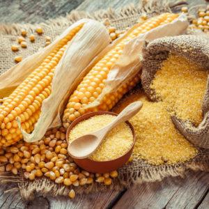 Azteca Corn Products